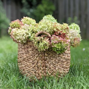 Dried Hydrangea Bunch